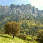 Lugares para visitar en Andalucia este verano (II)